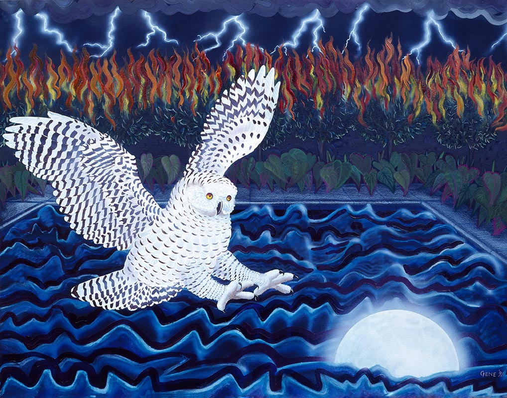 "©1993, Owl and Moon, 18x24"", mixed"